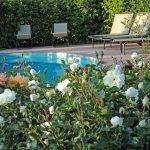 la piscina della Querceta in maggio