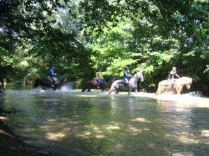 Week-End a cavallo